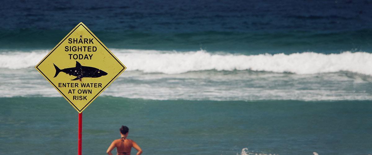 Se baigner en Australie en évitant les requins