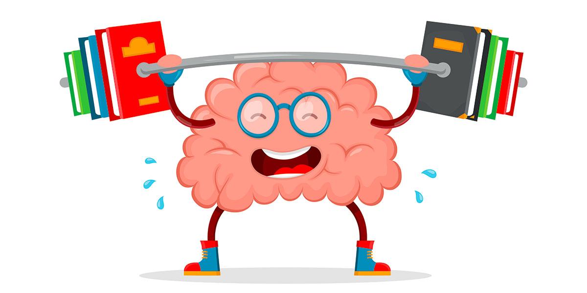 Le cerveau en action pour analyser le langage